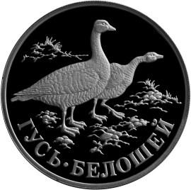 1 рубль. Гусь-белошей